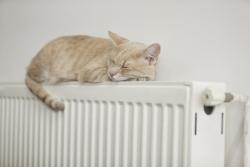 capaciteit radiator